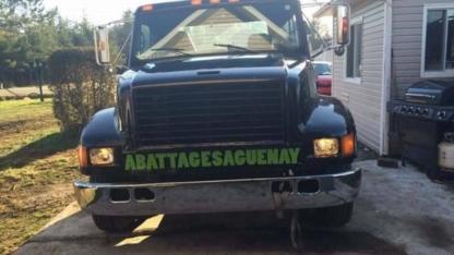 Service d'Abattage Saguenay - Service d'entretien d'arbres - 418-673-3062