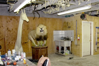 Select Taxidermy Products - Taxidermistes