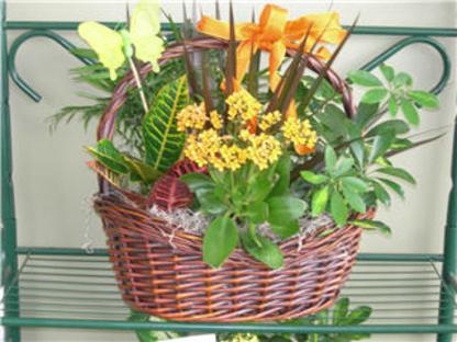 Floral Classics - Florists & Flower Shops - 905-275-4441