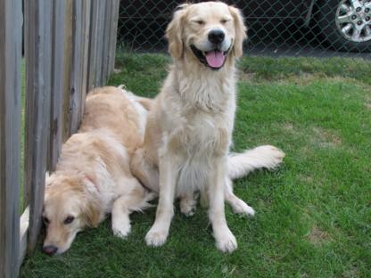 View Bonez & Katnip Pet Services's Hornby profile