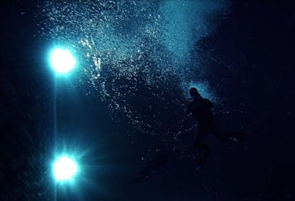Boutique Du Plongeur - Équipement et cours de plongée - 450-667-4656