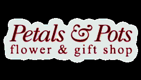 Petals 'N Pots - Florists & Flower Shops