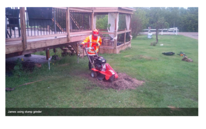 Alliance Tree & Stump Removal Inc - Service d'entretien d'arbres - 587-343-7410