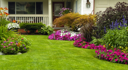 KC Lawn CareERIN - Lawn Maintenance