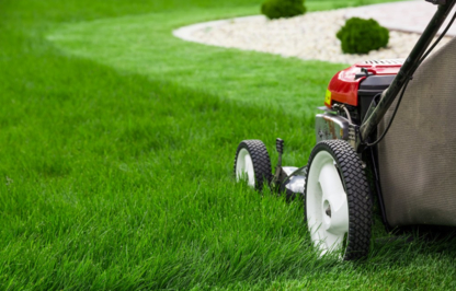 Dempseys Lawn Care - Lawn Maintenance - 604-243-6962