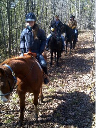 Service U-Nick - Écoles et cours d'équitation