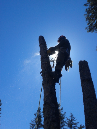 Krautter Tree & Yard Services - Tree Service - 204-364-1372