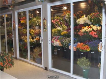 Fleuriste Fleurs de Cactus - Fleuristes et magasins de fleurs - 450-464-0340
