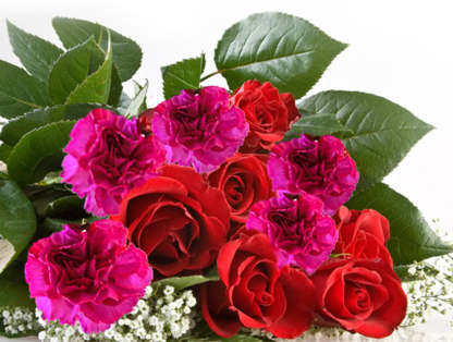 Elegant Expressions - Fleuristes et magasins de fleurs - 403-248-4850