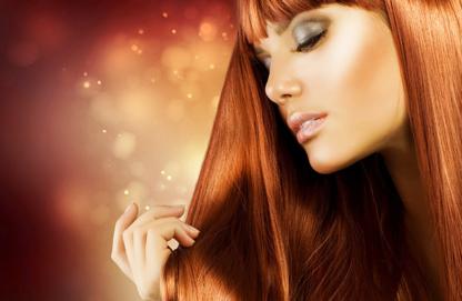 Avaia Salon Spa & Tanning Studio - Hair Stylists - 705-325-0511
