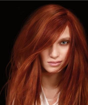 Évolution Coiffure - Hairdressers & Beauty Salons - 450-773-2999