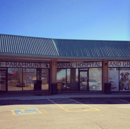 Paramount Animal Hospital - Veterinarians