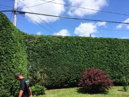 Pro-Vert - Lawn Maintenance - 819-665-2255