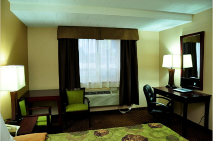 Luxury Inn - Auberges - 705-445-2061