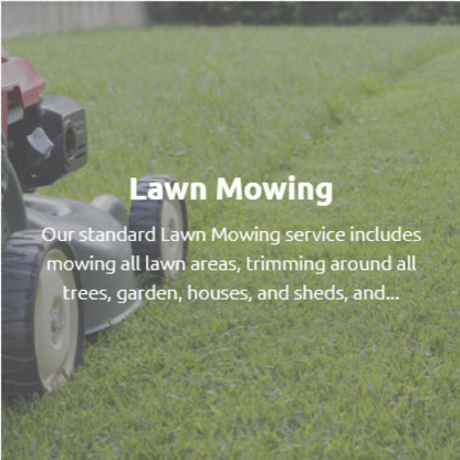 View Tyler's Lawn Care/Landscape & Snow Removal's Halifax profile