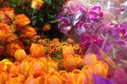 Granville Island Florist - Florists & Flower Shops - 604-669-1228