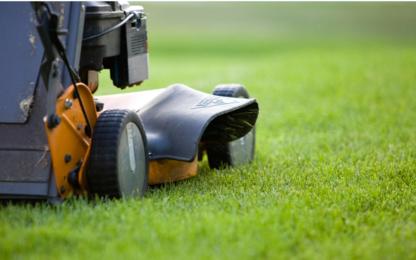 Bolt Landscaping Ltd - Lawn Maintenance - 647-856-5347