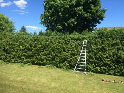 Taille de Haies Kilsdonk - Service d'entretien d'arbres - 450-357-3144