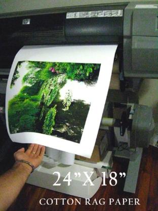 Silver Lion Framing Shop - Picture Frame Dealers - 416-535-9366
