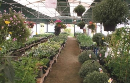 Carey's Garden Centre - Florists & Flower Shops - 705-286-0148