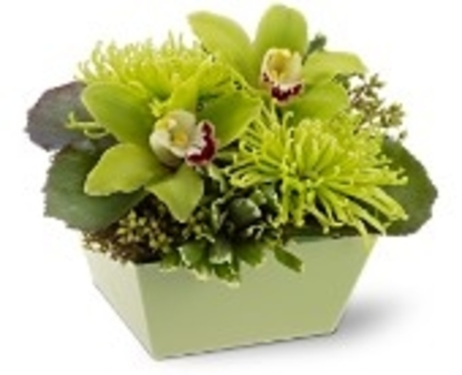 Quinte Floral Design Ltd - Florists & Flower Shops - 613-969-1202