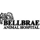 Bellbrae Animal Hospital - Logo