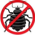 Abiosphère Extermination - Pest Control Services