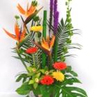 Maison Marchand Fleuriste - Fleuristes et magasins de fleurs - 418-543-4016