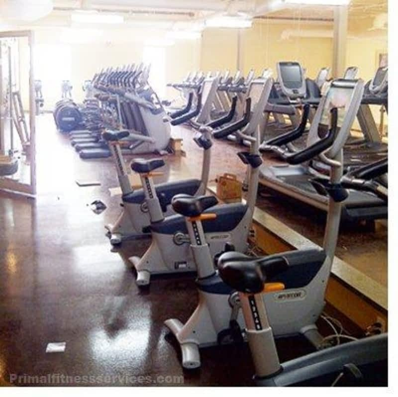 photo Primal Fitness Service Ltd