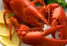 Superior seafood: Lobster you'll love in Calgary