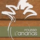 Pousse l'Ananas - Épiceries