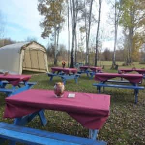 reife-maedels-die-gerne-campen