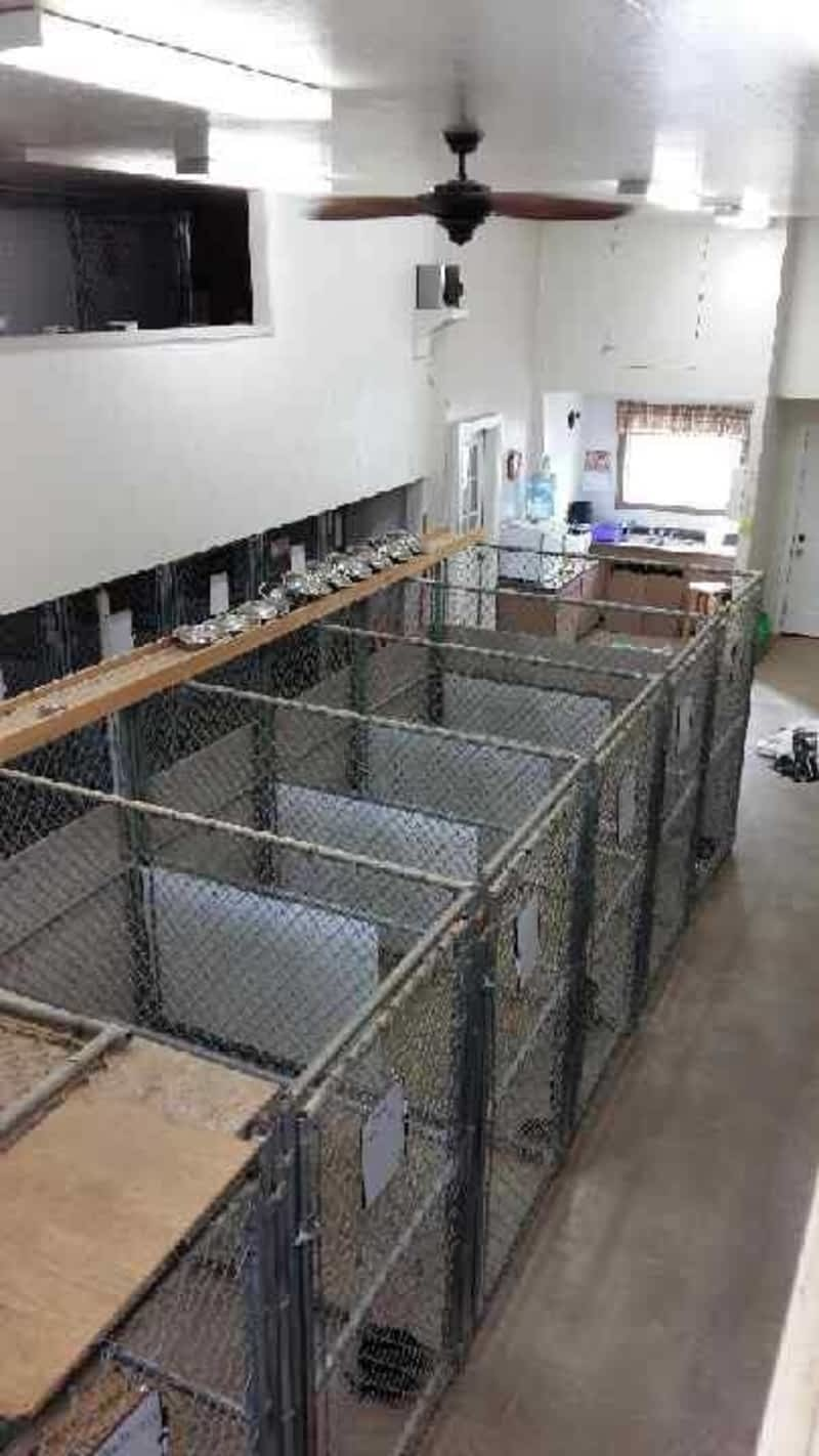 Peace Country Kennels Pouce Coupe Bc 13588 Old