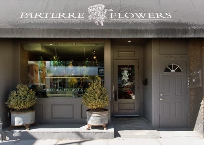 photo Parterre Flowers