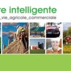 Hénault Assurance Inc - Car Insurance - 1-800-567-0906