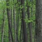 Voir le profil de Porter Lumber Ltd - Hamilton & Area