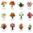 Westdale Florist - Florists & Flower Shops - 905-527-4127