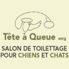 Salon de Toilettage Tête à Queue - Toilettage et tonte d'animaux domestiques