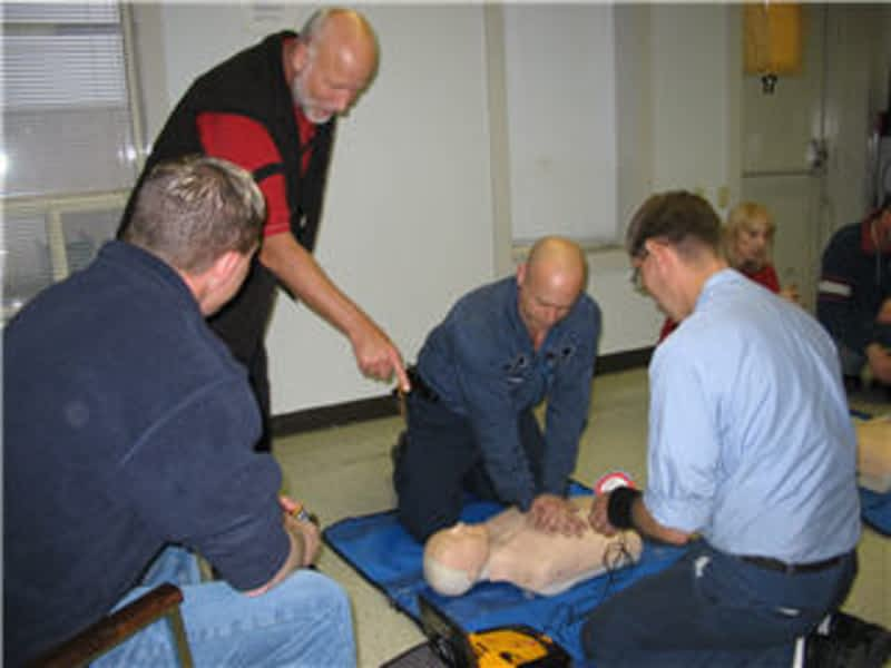 Therapy Dog Training Programs Calgary