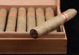 Toronto cigar shops