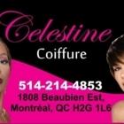 Célestine Coiffure - Hair Extensions
