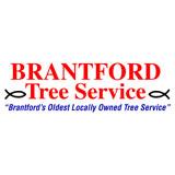 View Brantford Tree Service's Brantford profile