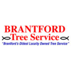Brantford Tree Service - Tree Service