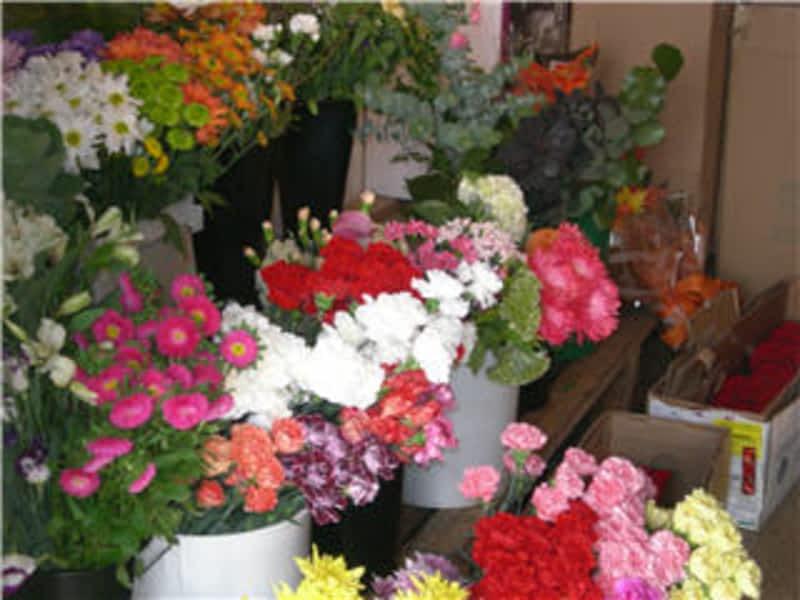 photo Floral Classics