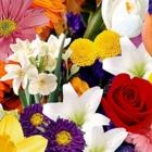 Voir le profil de Petites Gateries Florist - Montebello