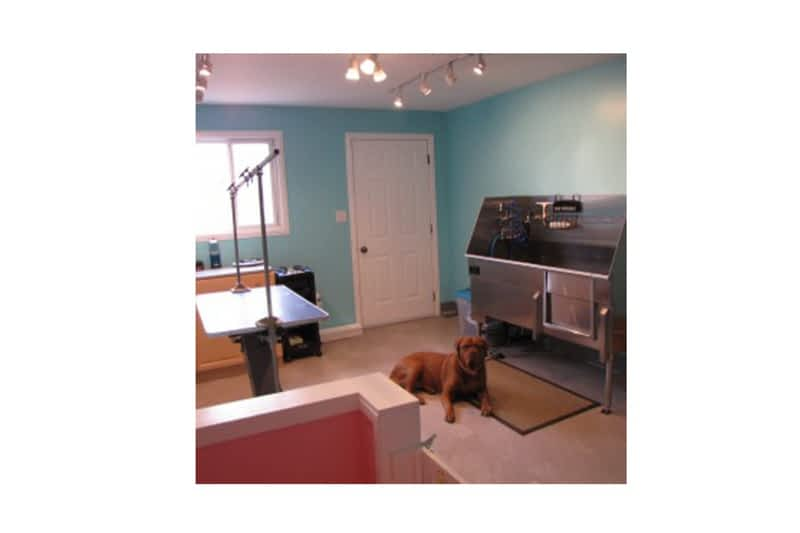 Ruffmutts Grooming Niverville Mb 18 Hillcrest Crt