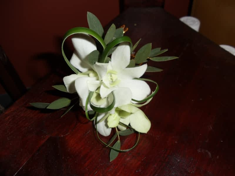 photo Mood Moss Flowers