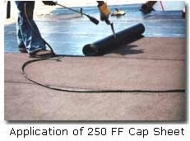 Proline Roofing Ltd Victoria Bc 3578 Quadra St Canpages