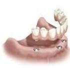 Bouchard Caroline - Denturologistes