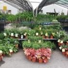 Pépinière Jardin 2000 Inc - Nurseries & Tree Growers - 450-649-2622